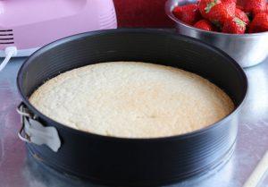 The sponge cake, ready for the custard